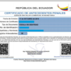 Certificado de antecedentes penales: Record policial