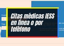 Agendar Cita Médica IESS por Internet