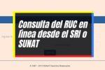 Cómo Consultar el RUC por Internet