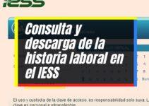 IESS: Proceso para consultar la Historia Laboral