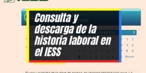 IESS: Proceso para consultar y generar la Historia Laboral