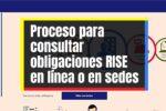Consulta de cuotas y pagos RISE en línea