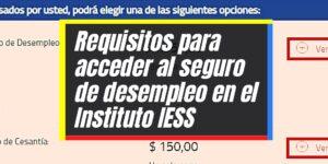 Pasos para acceder al seguro de desempleo en el IESS