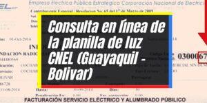 Consulta, pago y duplicado de planilla CNEL en línea